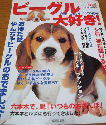 Koyuki_200712_e09