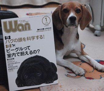 Koyuki_200712_i05