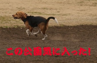 2008_01m41
