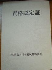 2008_03b01_2