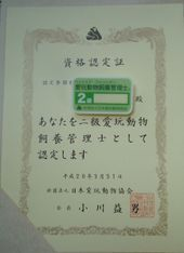2008_03b07_2