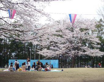 2008_04e05