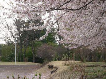 2008_04h101