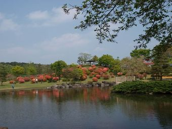 2008_04_29_05