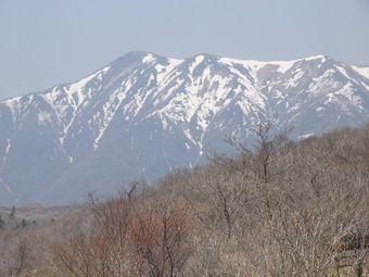 2008_04_29_18
