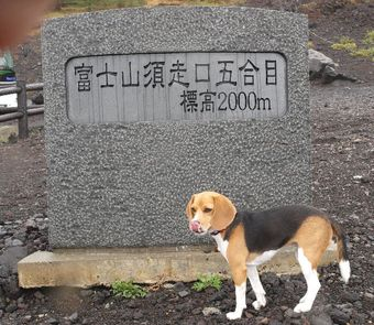 2008_06_13_03