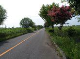 2008_08_21_02
