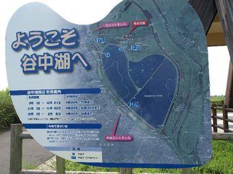 2008_08_21_04