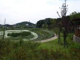 2008_08_21_1