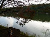 2008_11_02_05