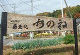 2008_11_16_04