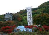 2008_11_16_09