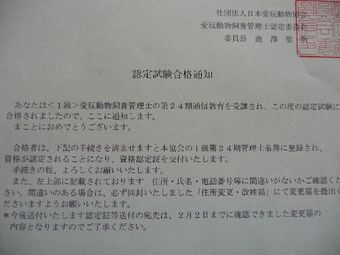 2009_01_21_04