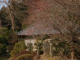 2009_02_04_11