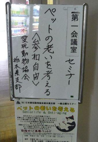 2009_02_11_04