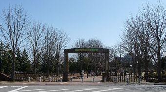 2009_03_15_24