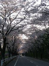 2009_04_09_03