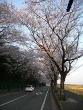 2009_04_09_04