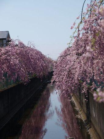 2009_04_11_13