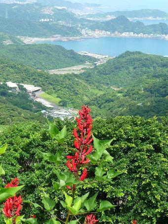 2009_06_taiwan26