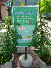 2009_07_12_03