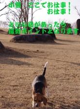 2009_01_07_09