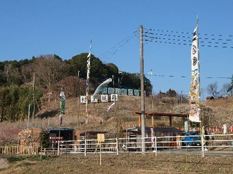 2010_0310