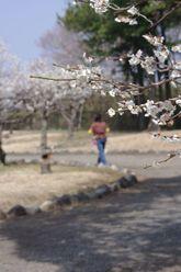 2010_032_11