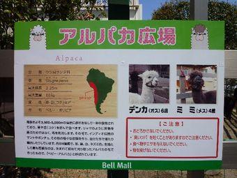 Fuji_f20001