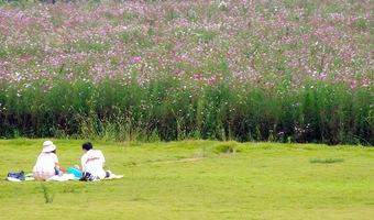 201009kokaigawa7